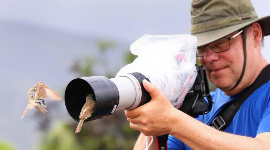 Fotografo con fringuelli