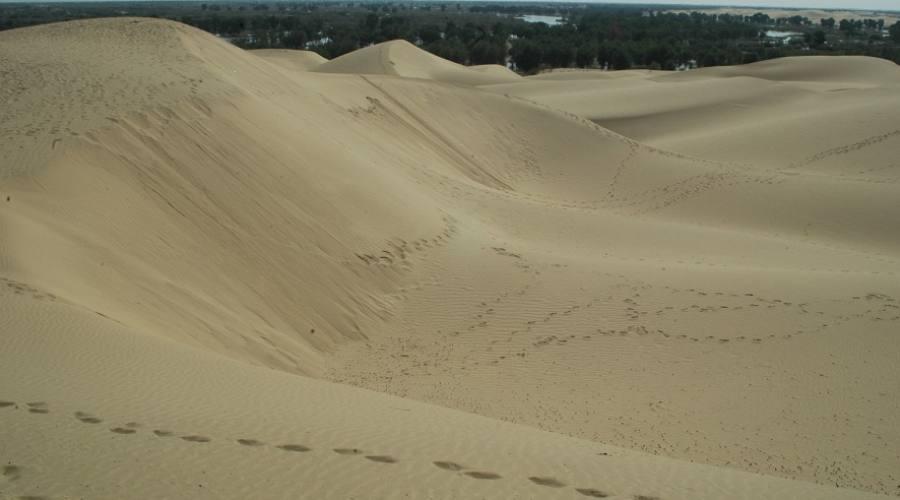 colline di dune