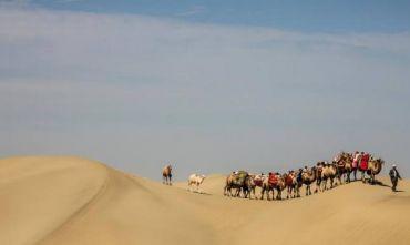 Spedizione in cammello attraverso il deserto del Taklimakan