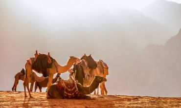 Tour di gruppo Da Petra a Gerusalemme - 8 giorni