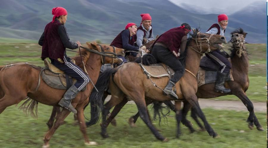 cavalieri kyrgyzy