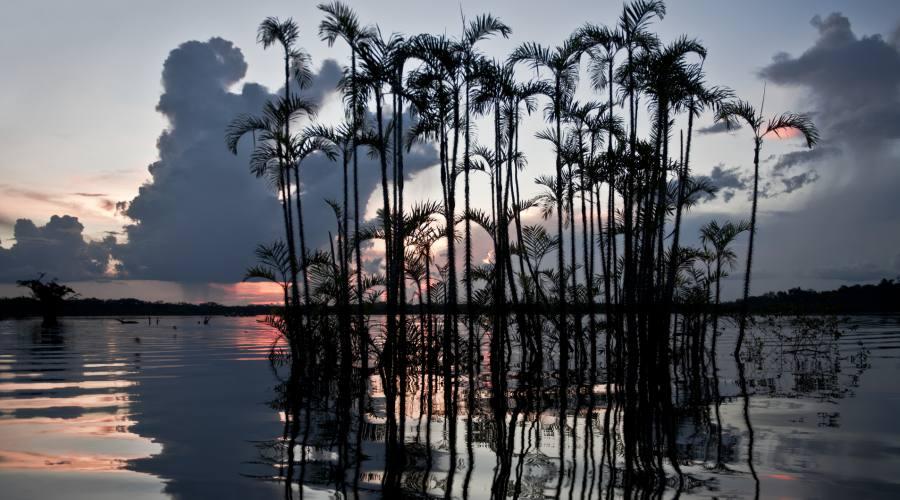 Laguna in Amazzonia