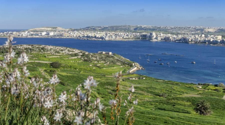 Malta: Vista su Bugibba