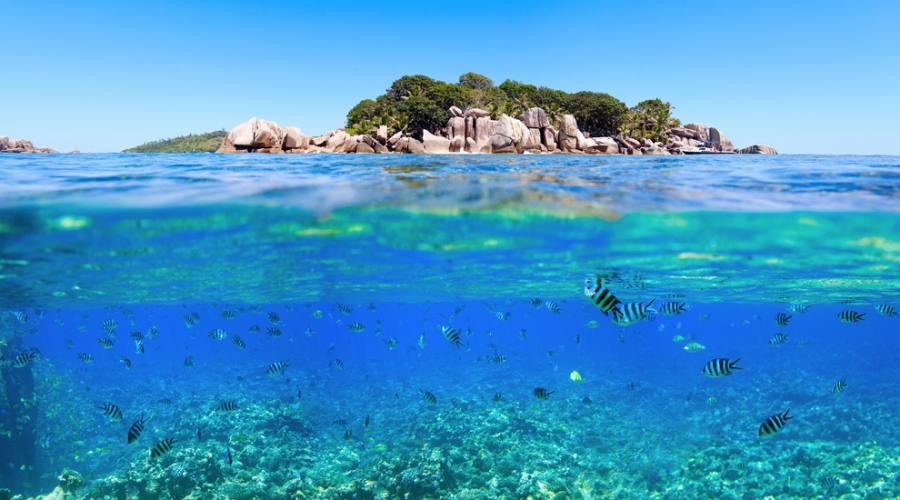 Seychelles Saint Pierre