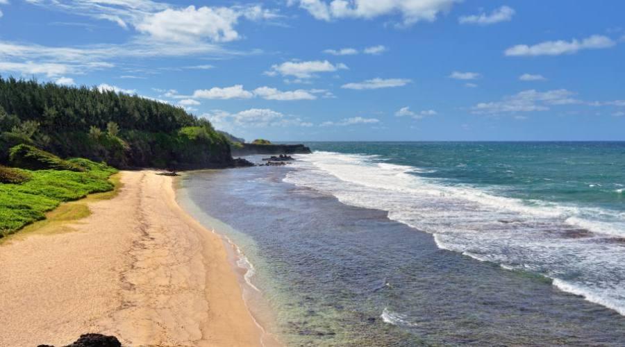 Une plage en Gris Gris