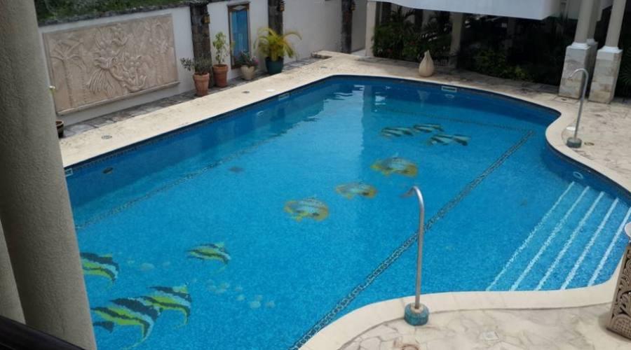 La piscine à disposition des hôtes
