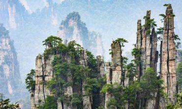 Meravigliosa Natura Cinese: la foresta di Avatar e i Panda