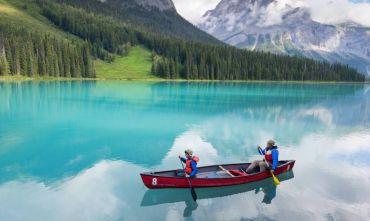 In viaggio tra cascate, montagne, balene e orsi!