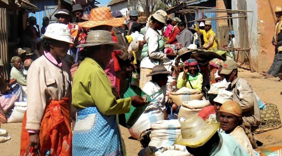 Ambalavao - mercato degli zebù