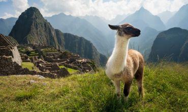 Da Lima a La Paz, un viaggio in due paesi!