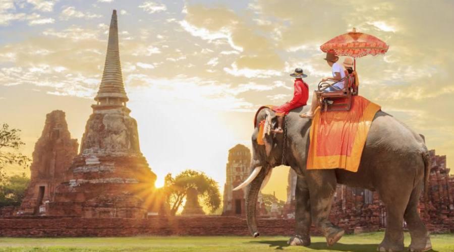 Le trekking avec l'éléphant ... très impressionnant!