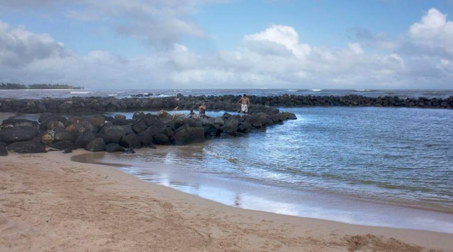 Kauai - la laguna di Kapaa