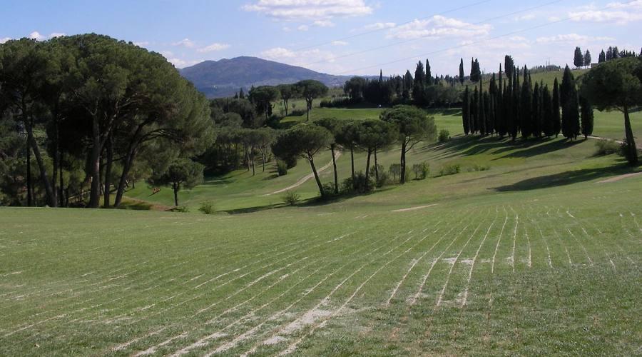 Ugolino Campo