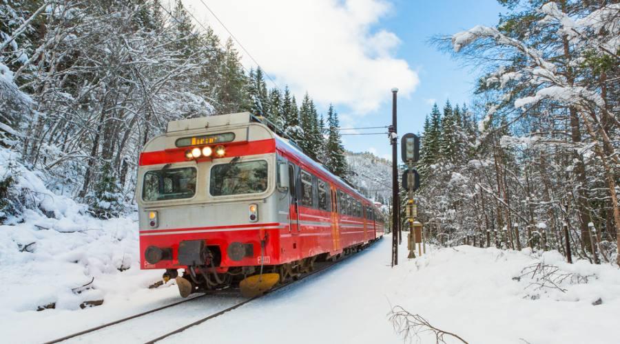 Treno da Bergen a Oslo