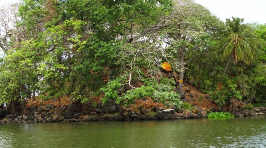 Isolotto nel lago Cocibolca