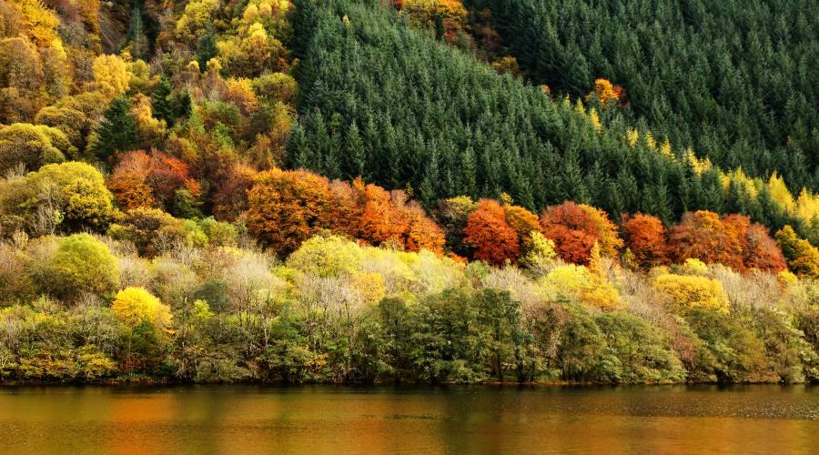 Lago di Lochness