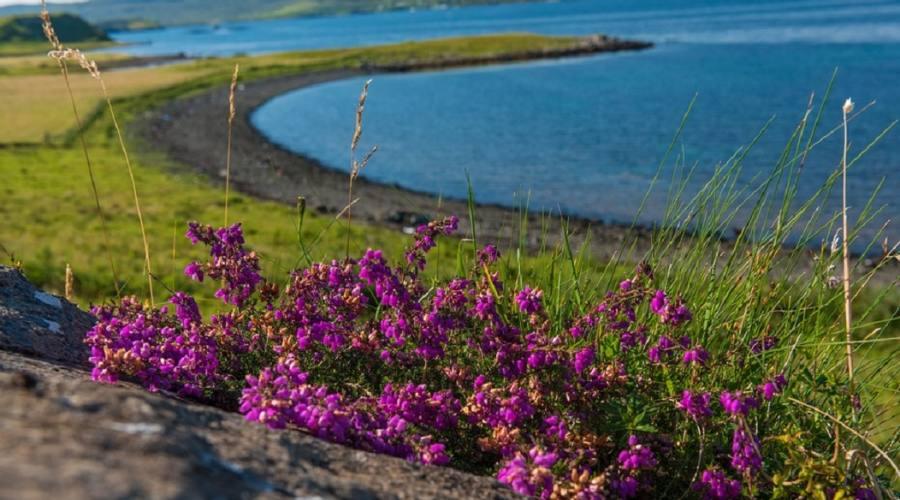 Isola Skye - Coral beach