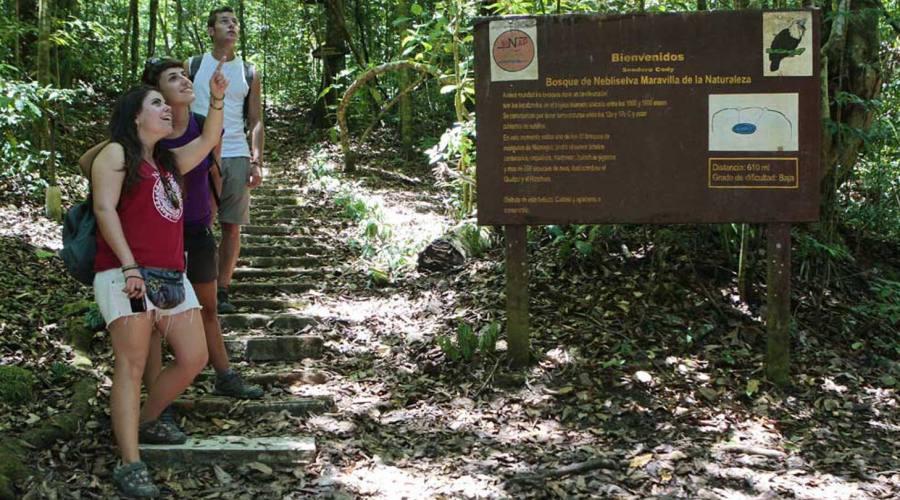 Escursione a Selva Negra