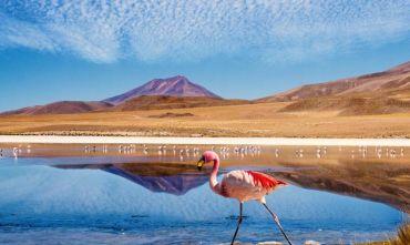 La Paz - Salar de Uyuni – Laguna Colorada – Laguna Verde – Potosí -  Sucre con servizi privati