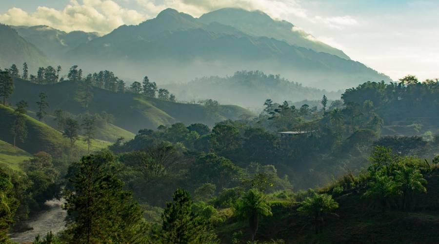Alba nella giungla vicino a Tikal