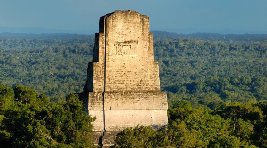 Tikal, piramide che emerge dalla foresta