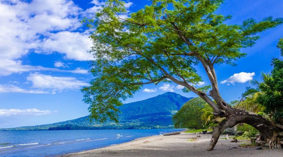 Una bella spiaggia su cui rilassarsi
