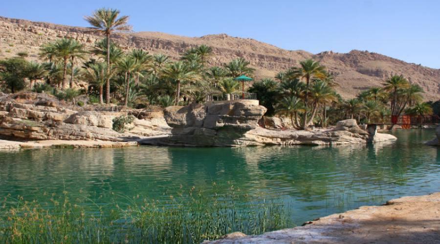 Oasi di Wadi Bani Khalid