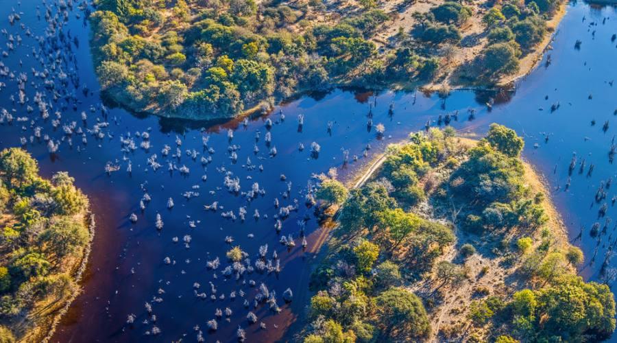 Panoramica del Delta dell'Okavango