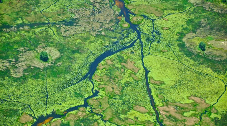 Vista aerea del Delta dell'Okavango