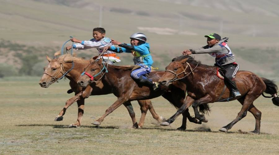 corsa fra cavalli