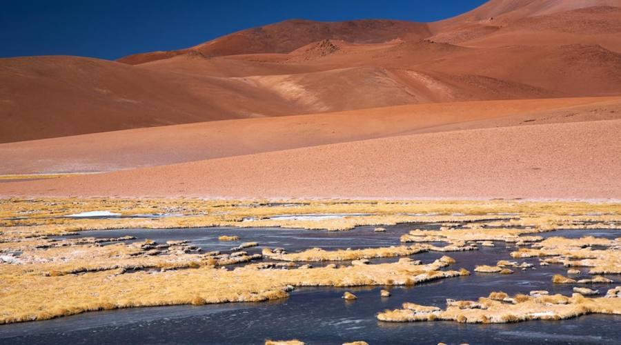 Laguna nel deserto de Atacama