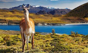 Santiago, la Regione dei laghi & la Patagonia