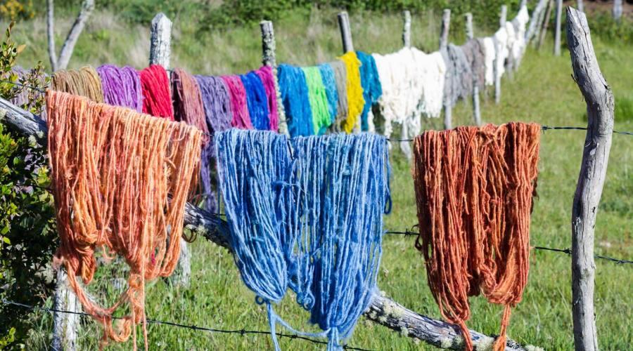 Lana stesa ad asciugare, Chiloé
