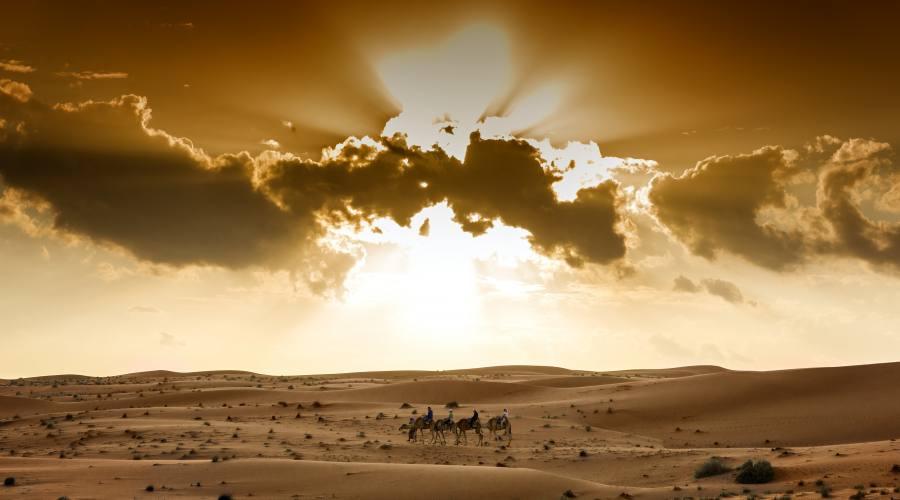 il deserto di Wahiba