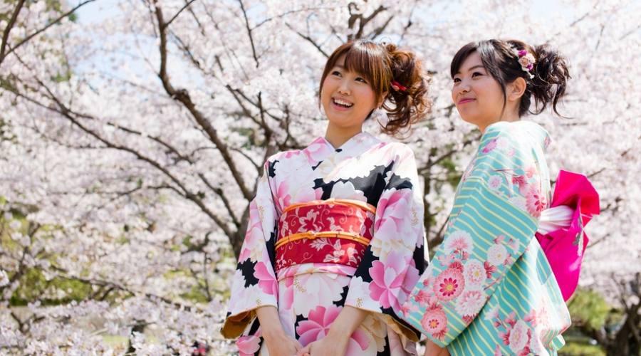 Gli splendidi colori di un kimono