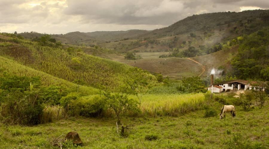 Circito Engenhos - Paraiba Brasil