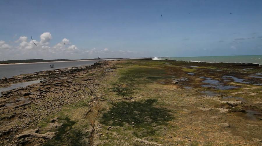 Barra di Camaratuba: Area di protezione del Lamatino