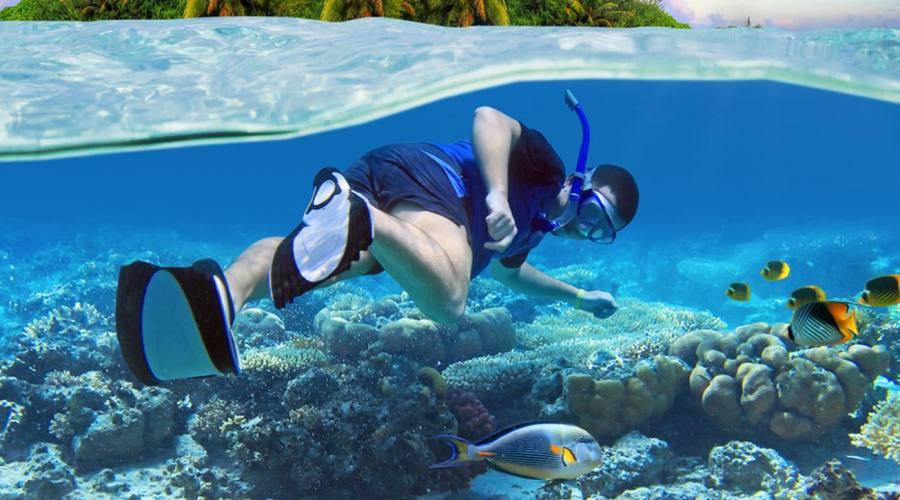 Snorkeling a Corn Island