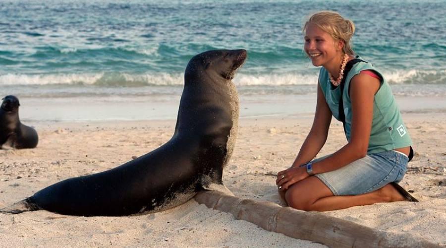 Galapagos, ecco un nuovo amico!