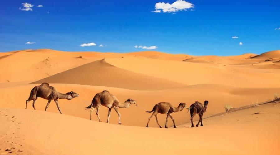 Les dunes de Merzouga Sahara