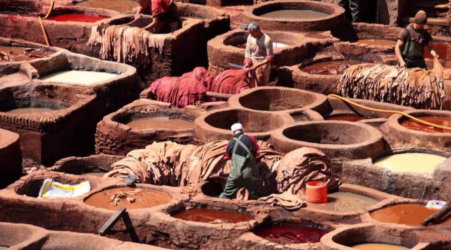 Fez - tanneries