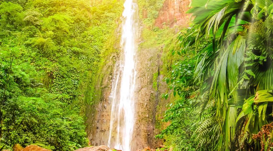 Le cascate dell'Isola di Basse Terre, Guadalupa