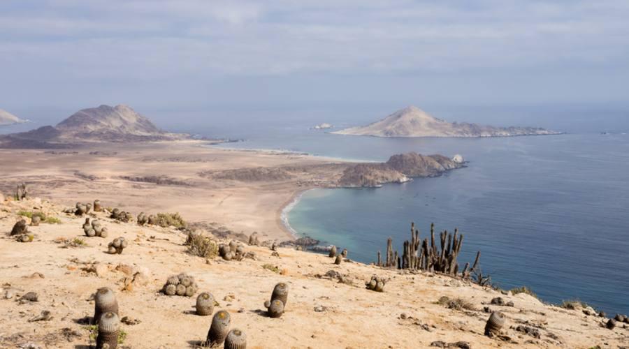 Cactus, deserto e oceano Pacifico