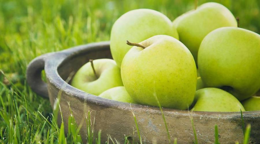 Frutti della terra...