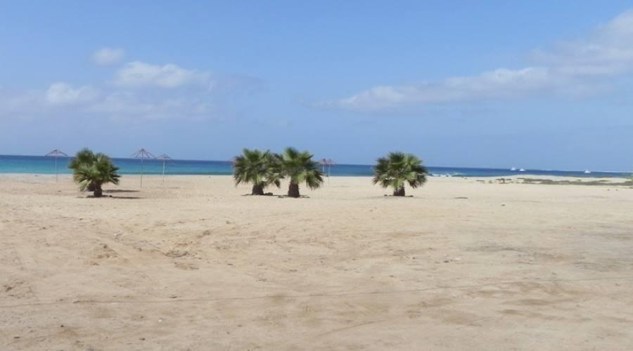 La spiaggia di Algodoeiro