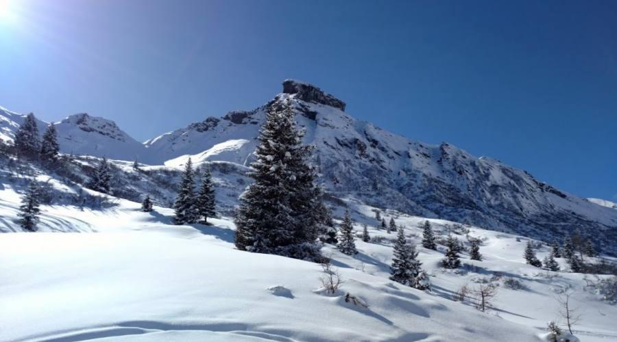La neve a Cortina