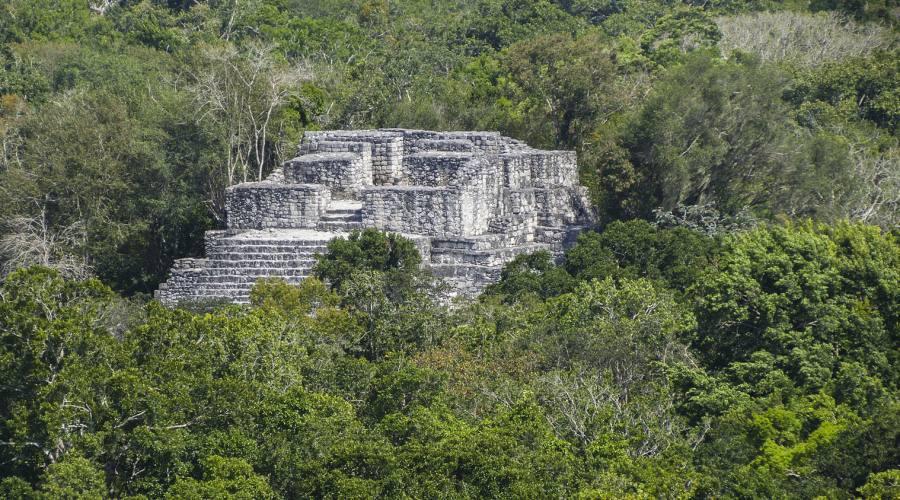 6° giorno: sito di Calakmul
