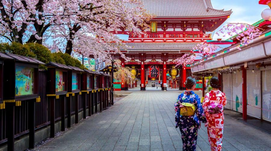 Geishe a Tokyo