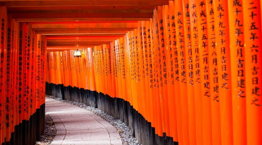 Il Santuario Fujimi Inari a Kyoto