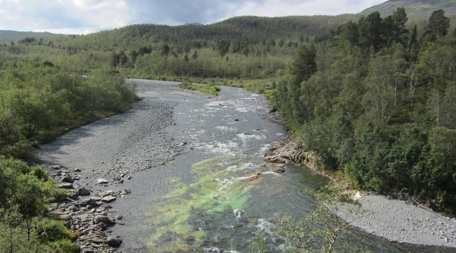 Parco Kiruna